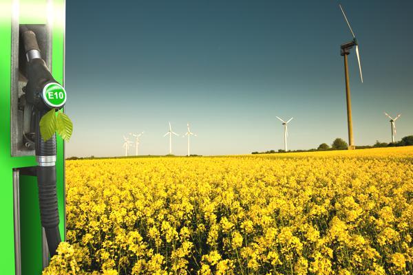 Führt E10 durch den Anbau von Energiepflanzen zur Verstärkung des Welthungers?